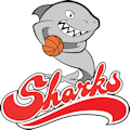 Beaumaris Sharks Basketball Club